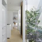 green edge house 11