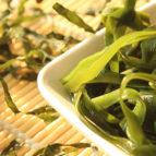 morska alga kelp