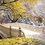 rajski vrt 03