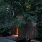 treehouse 01 59x49