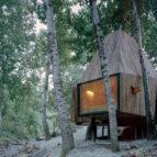 treehouse 05 80x62