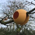 rephorm_ballcony_birdball_tree